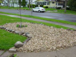 Picture of planting bed with mulch