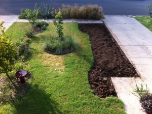 Area after dead grass dug up