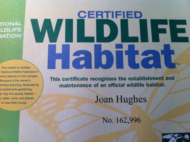Pictures of Certificate of Certified Wildlife Habitat